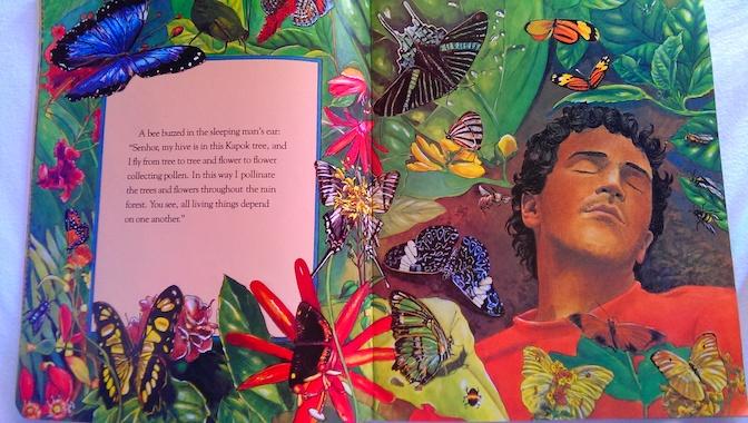 KapokTreeButterflies.jpg